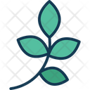 Ecologism Leaves Natural Icon