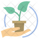 Ecologist Plant Agriculture Icon