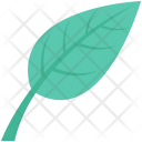 Ecology Foliage Leaf Icon