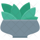 Ecology Foliage Spinach Icon