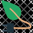 Ecology Leaf Energy Icon