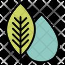 Ecology Elements Globe Icon
