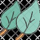Ecology Foliage Leaf Icon