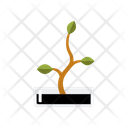 Ecology Plant Botany Icon