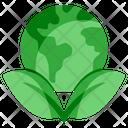 Ecology World Globe Icon
