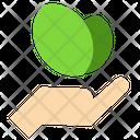 Ecology Nature Plant Icon