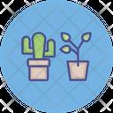 Ecology Gardening House Plants Icon