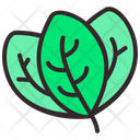 Forest Leaf Icon