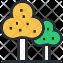 Ecology Greenery Nature Icon