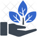 Plant Ecology Care Icon