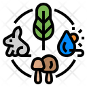 Ecosystem Climate Change Environment Icon