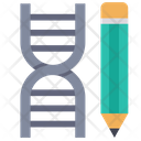Dna Dna Structure Science Icon