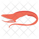 Eel Eel Fish Fish Icon