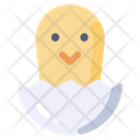 Egg Hatch Chicken Icon