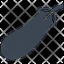 Food Eggplant Vegetable Icon