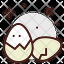 Eggs Boiled Egg Egg Icon