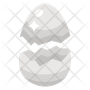 Edible Egg Egg Shell Icon