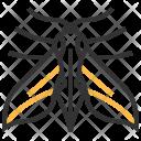 Elephant Hawk Moth Icon