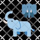 Elephant Wildlife Animal Icon