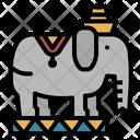 Elephant Zoo Wild Icon
