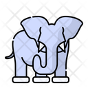 Elephant Animal Zoo Icon