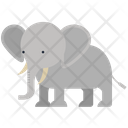 Elephant Animal Wild Animal Icon