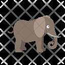 Elephant Animal Wildlife Icon