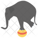 Elephant Act Circus Elephant Elephant Performance Icon