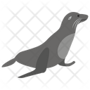 Elephant Seal Icon