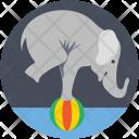 Elephant Stunt Icon
