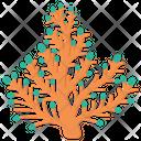 Elkhorn Coral Icon