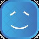 Face Smiley Emoji Icon