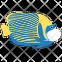 Emperor Angel Fish Ocean Icon