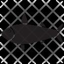Emperor Tetra Underwater Icon