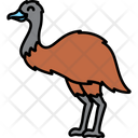 Emu Ostrich Animal Icon