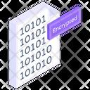 Encrypted Data Icon