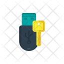 Encrypted pendrive Icon
