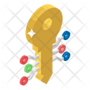 Digital Key Encryption Key Private Key Icon