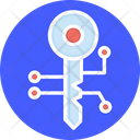 Encryption Key Data Encryption Digital Key Icon