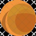 Endor Icon
