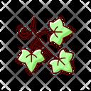 English Ivy Ivy Plant Icon