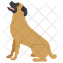 English Mastiff Icon