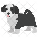 English Springer Spaniel Icon