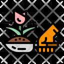 Gardening Plan Growth Icon