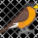 Eurasian Bullfinch Icon