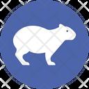 European Rabbit Animal Farm Mammal Icon