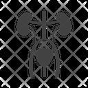 Excretory Icon