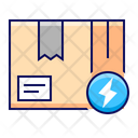 Package Delivery Express Icon
