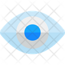 Eye Visible Retina Icon