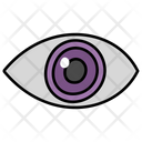 Inspect Examine Observe Icon